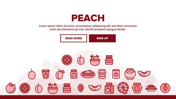 pfirsich frucht landung header vektor - nektarinenmarmelade stock-grafiken, -clipart, -cartoons und -symbole
