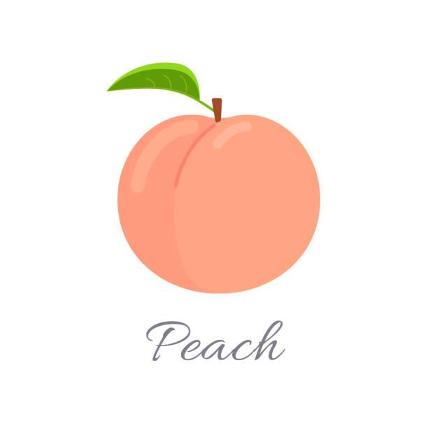 pfirsich-symbol mit titel - peach stock-grafiken, -clipart, -cartoons und -symbole