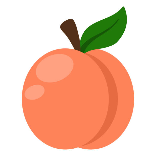 pfirsich-illustration - peach stock-grafiken, -clipart, -cartoons und -symbole