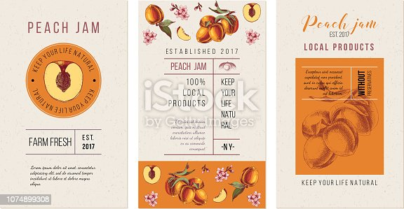 3 peach jam flyer templates with place for text and hand drawn ripe fruits. Vector illustration