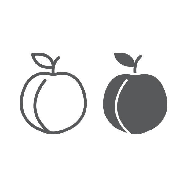 Peach line and glyph icon, fruit and vitamin, apricot sign, vector graphics, a linear pattern on a white background, eps 10. vector art illustration