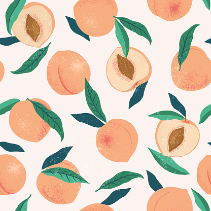 Peach or apricot seamless pattern. Hand drawn fruit and sliced pieces. Summer tropical endless background. Vector fruit design for label, fabric, packaging.