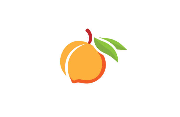 pfirsich-orange-logo - peach stock-grafiken, -clipart, -cartoons und -symbole