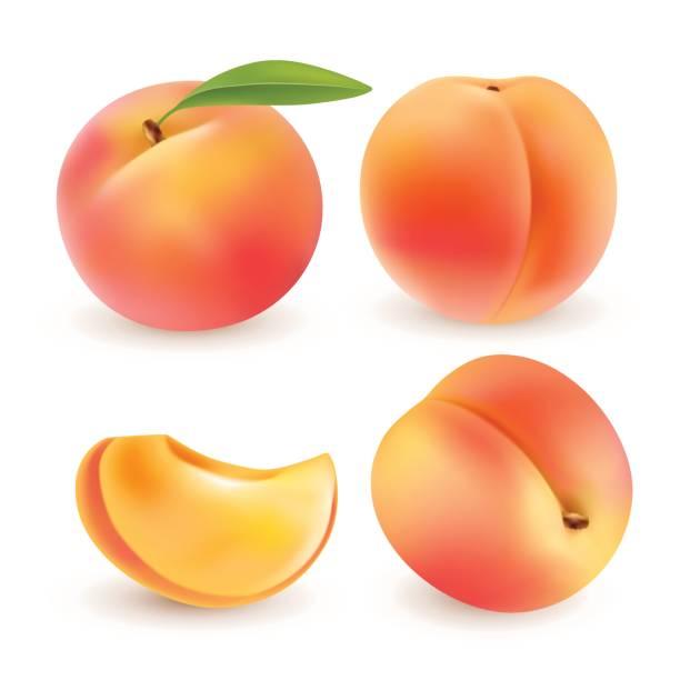 illustrations, cliparts, dessins animés et icônes de peach. fruits sucrés. 3d jeu d'icônes vectorielles. illustration réaliste - pêche