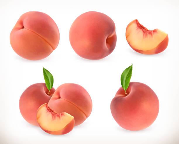 süße pfirsichfrucht - peach stock-grafiken, -clipart, -cartoons und -symbole