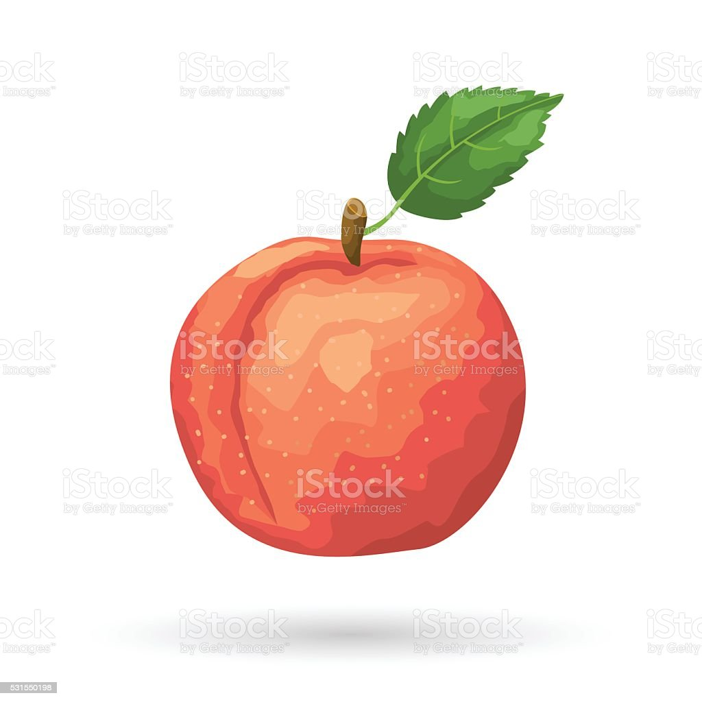 Peach vector art illustration