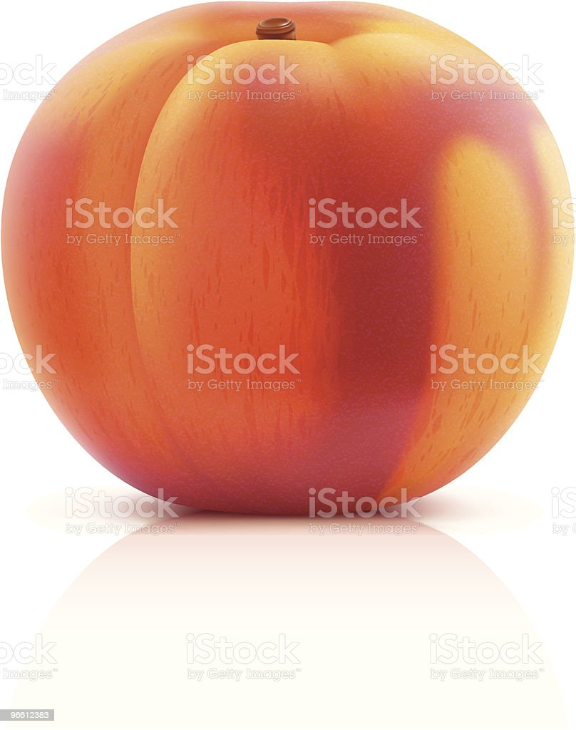 Peach - Royalty-free Clip Art stock vector