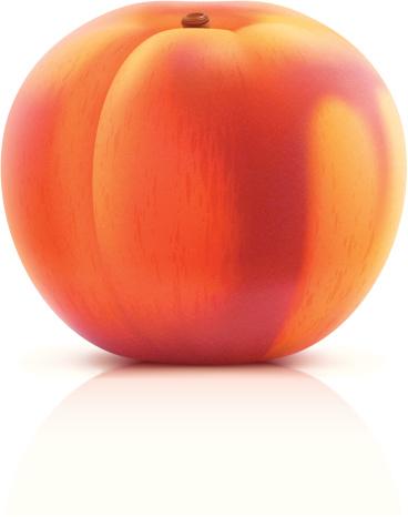 Peach-vektorgrafik och fler bilder på ClipArt