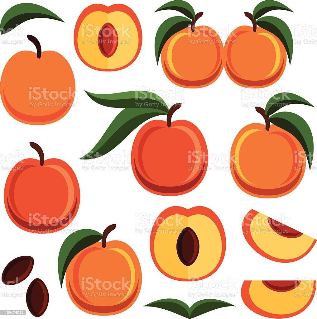 Peaches vector art illustration