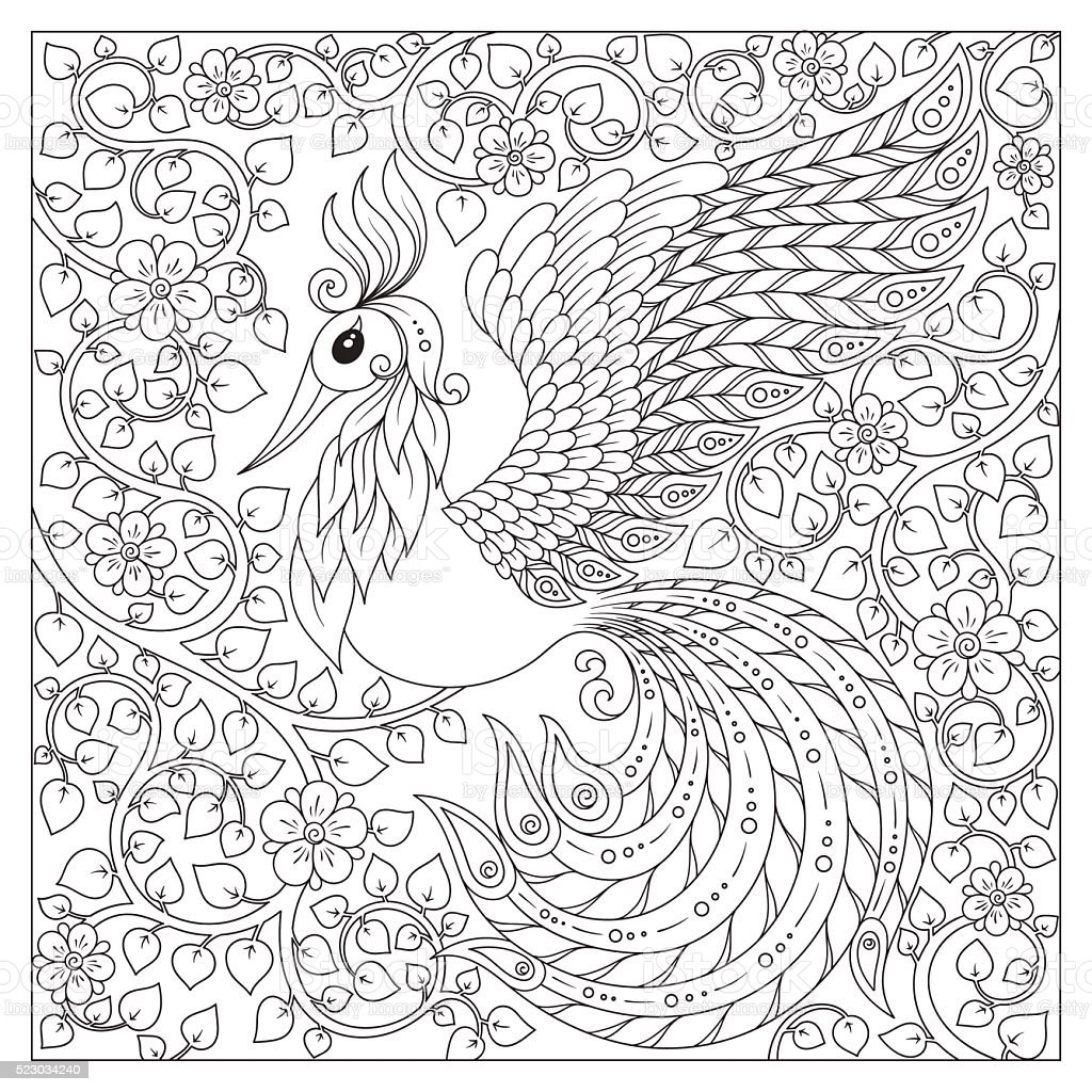 peacock antistress coloring page stock vector art 523034240