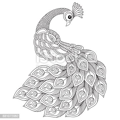 Peacock Coloring Pages Printable At Getdrawings Com Free For