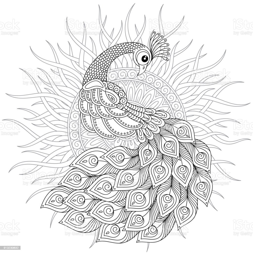Tavus Kuşu Yetişkin Antistress Boyama Sayfası Stok Vektör Sanatı