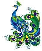 Peacock. Bird symbol. Vector background