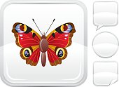 Peacock butterfly icon on silver button