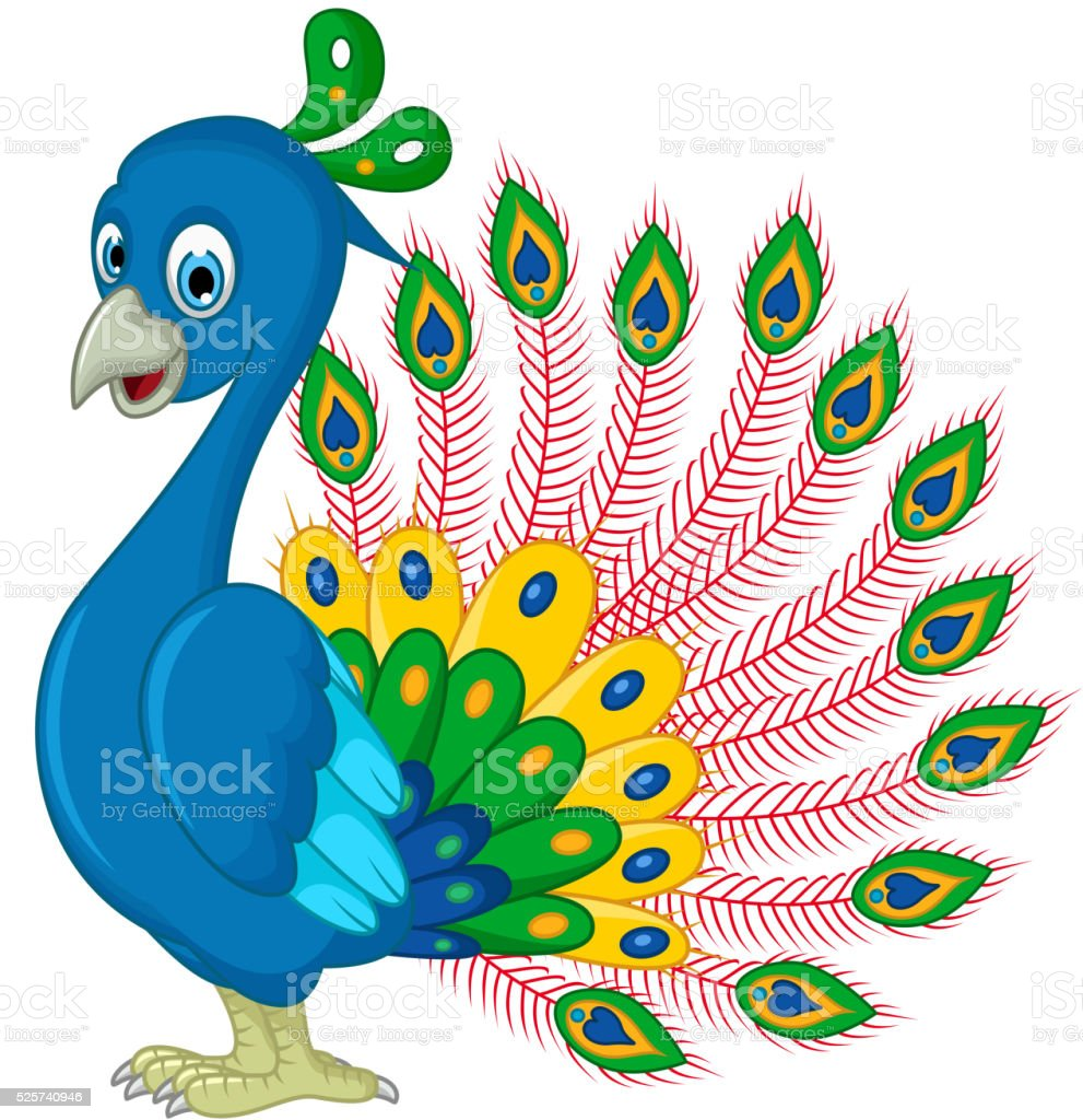 peacock cartoon for you design stock illustration download image now istock https www istockphoto com vector peacock cartoon for you design gm525740946 92458251