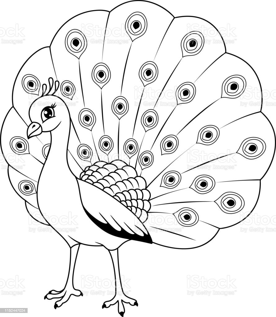Tavus Kusu Boyama Sayfasi Stok Vektor Sanati Animasyon Karakter