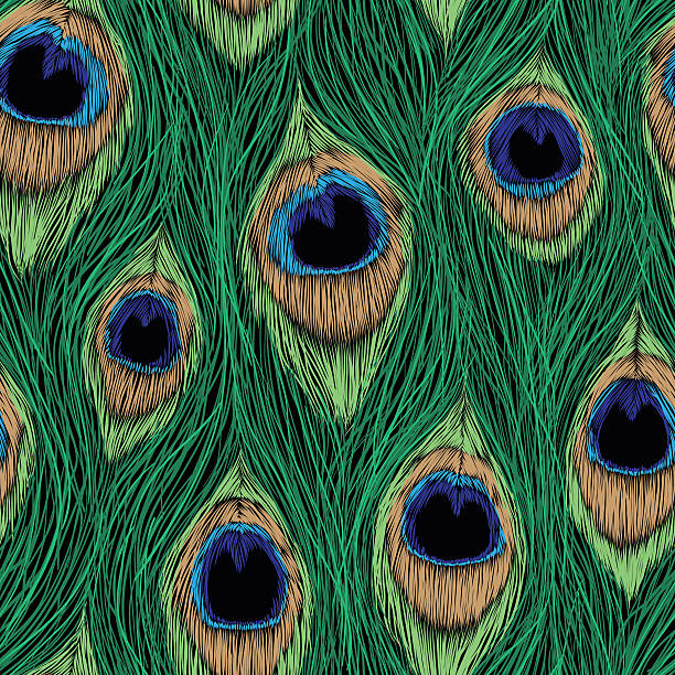 peacock feathers design. vector seamless pattern. - pfauenfarben stock-grafiken, -clipart, -cartoons und -symbole
