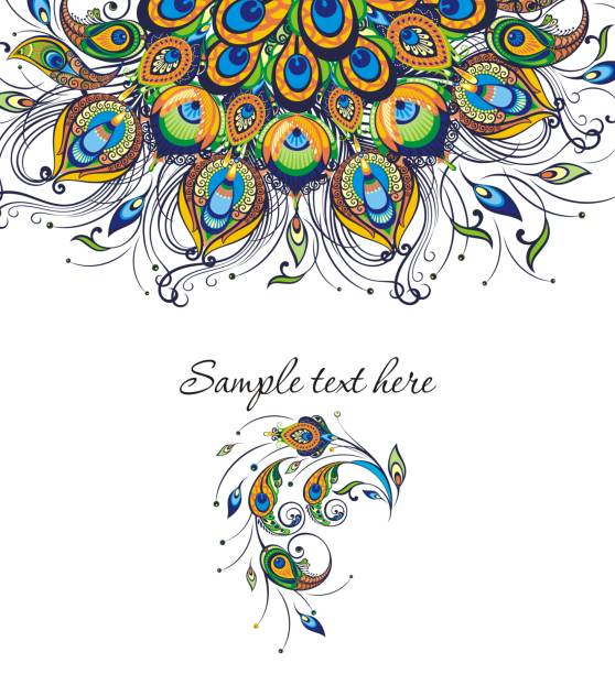 peacock feathers, vector design of cover - peacock stock illustrations
