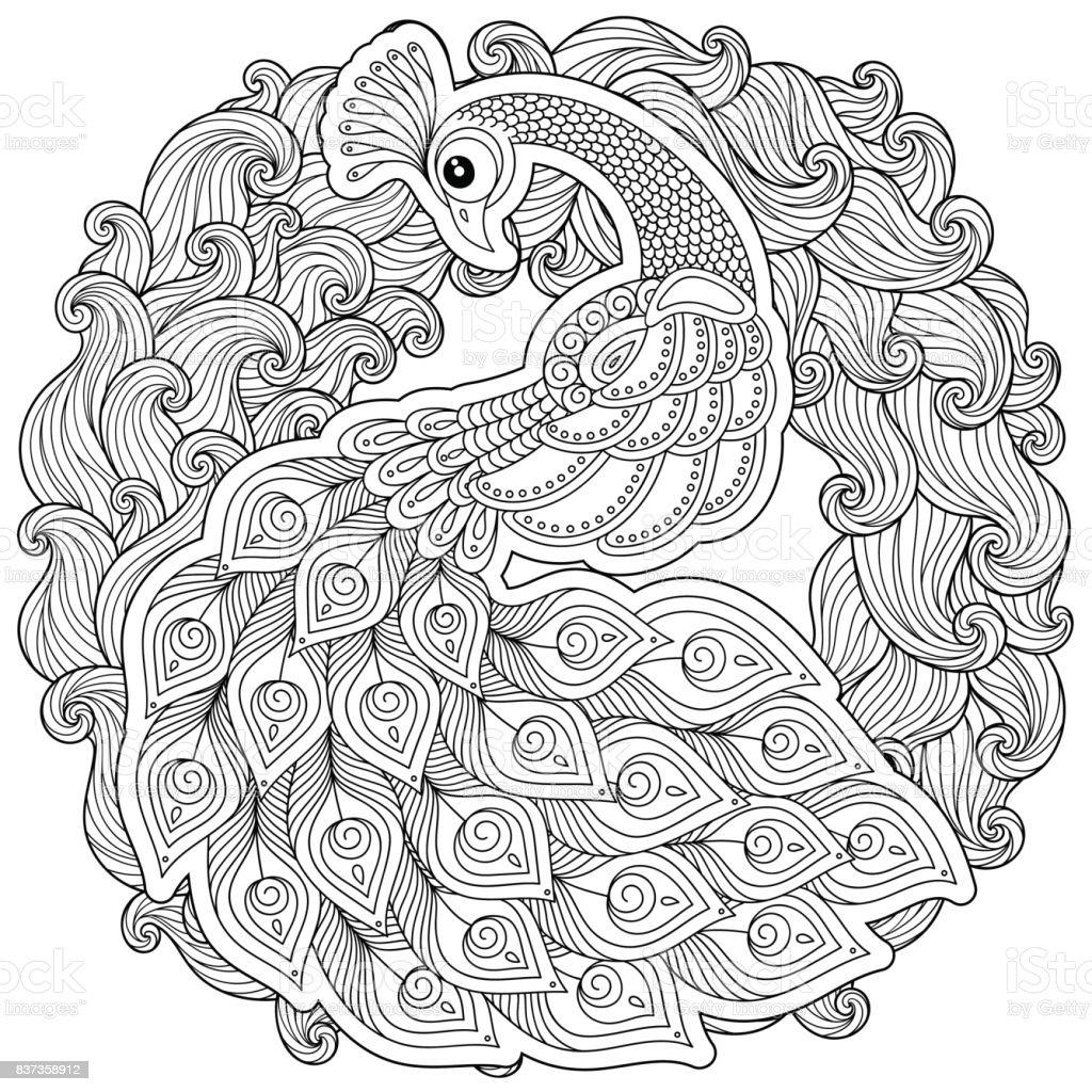 Doodle Tarzda Peacock Yetişkin Antistress Boyama Sayfası Stok Vektör