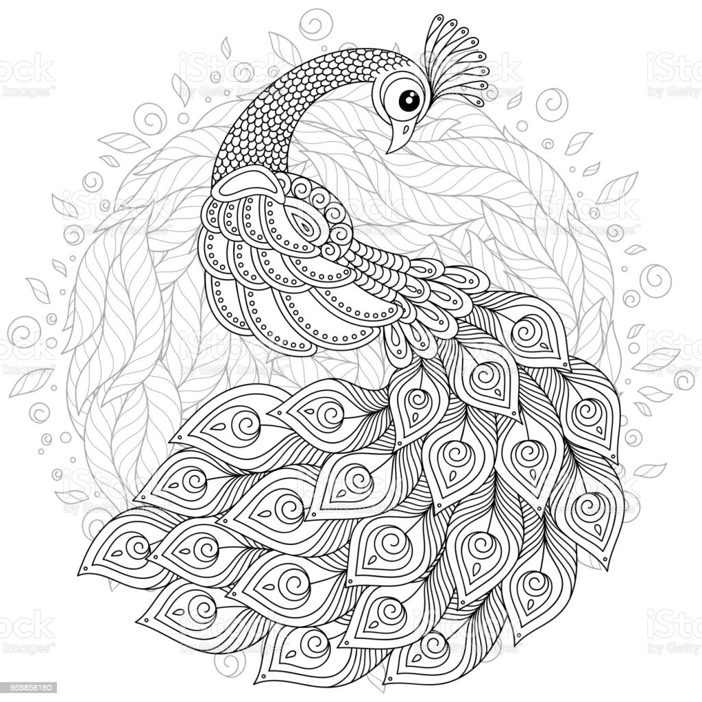 Peacock In Zen Style Adult Antistress Coloring Page Stock Vector Art