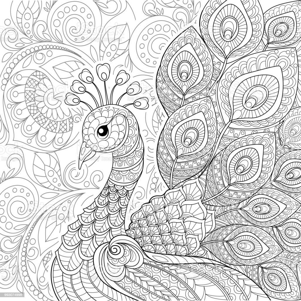 Ilustracion De Pavo Real En Estilo Zentangle Pagina Para Adultos