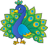 Peacock theme image 1 - eps10 vector illustration.