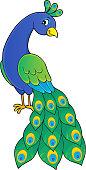 Peacock theme image 2 - eps10 vector illustration.