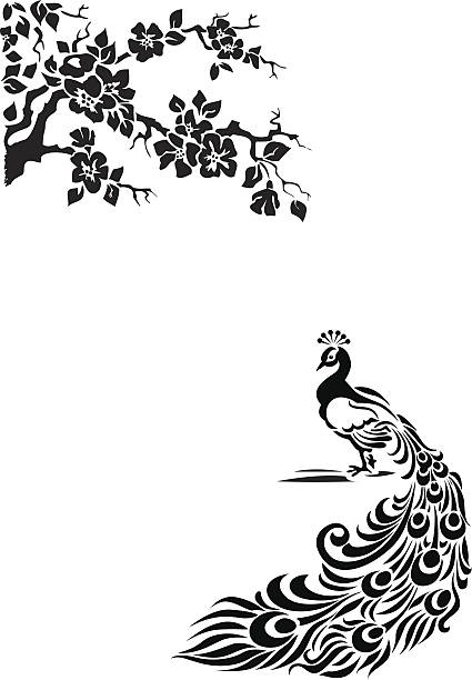 paw - peacock stock illustrations