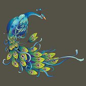 A dancing peacock with copy text space. vector in printing format and download with a rgb jpeg format.