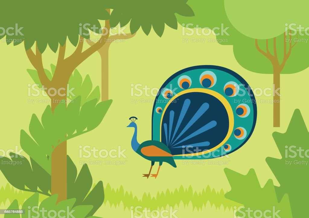 Peacock with flowing tail in forest habitat flat design cartoon vector wild animals birds. Flat zoo nature children collection. peacock with flowing tail in forest habitat flat design cartoon vector wild animals birds flat zoo nature children collection - immagini vettoriali stock e altre immagini di animale royalty-free
