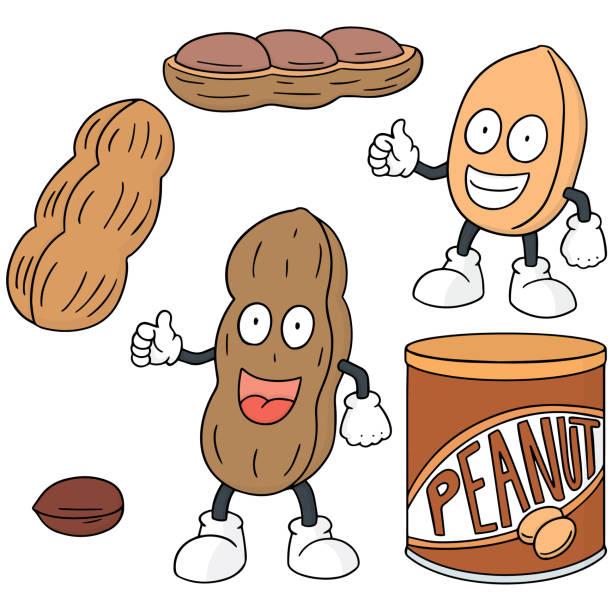 peanut - square foot garden stock illustrations, clip art, cartoons, & icons
