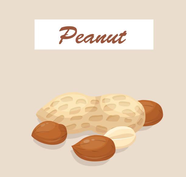 ilustrações de stock, clip art, desenhos animados e ícones de peanut - hope