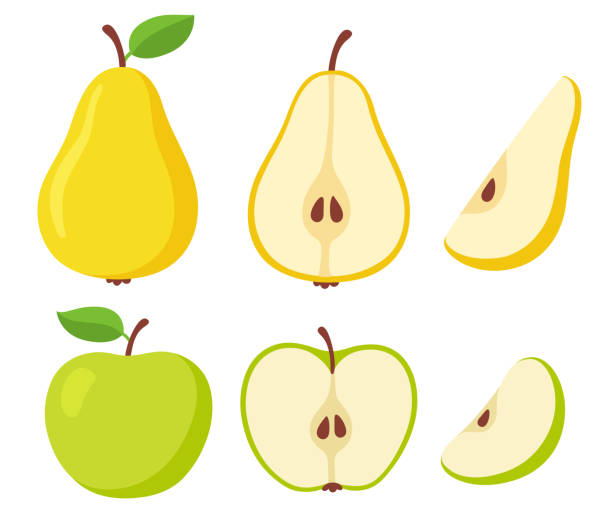 Pear and apple fruit set vector art illustration