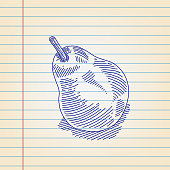 Line drawing of Pear, Elements are grouped.contains eps10 and high resolution jpeg.