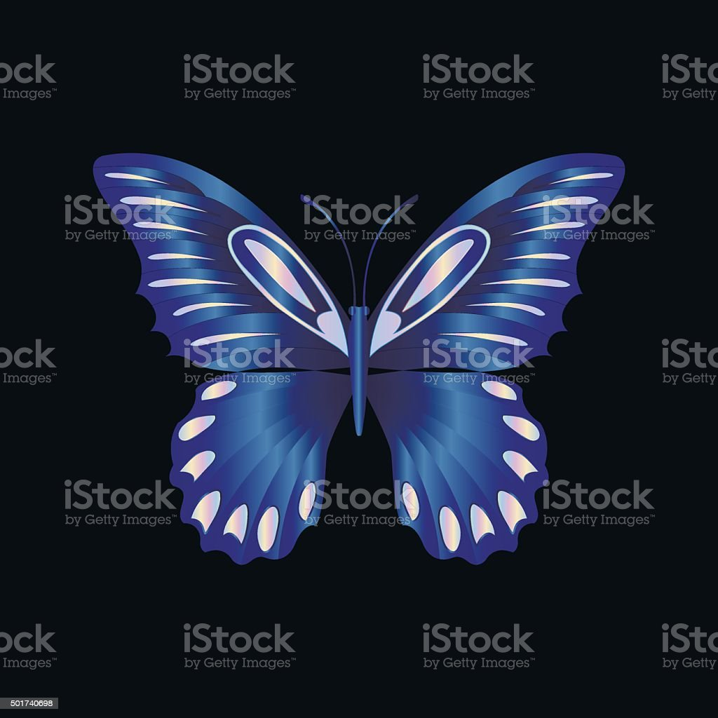 pearl Lace butterfly on black background vector art illustration