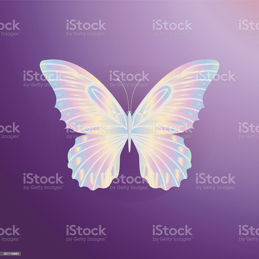 pearl Lace butterfly on purple background vector art illustration