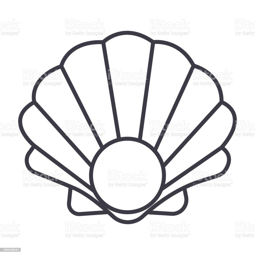 pearl shell vector line icon, sign, illustration on background, editable strokes