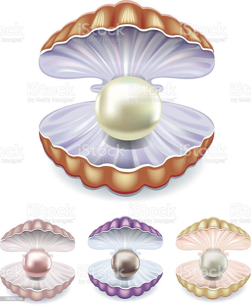 Pearl vector art illustration