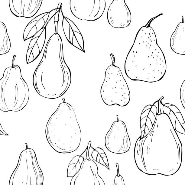 ilustrações de stock, clip art, desenhos animados e ícones de pears. vector  seamless pattern - natureza close up