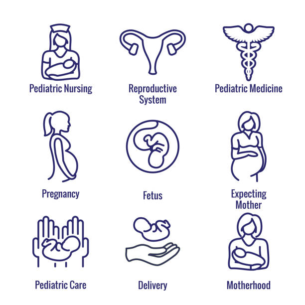 Pediatric Medicine with Baby / Pregnancy Related Icon Pediatric Medicine w Baby or Pregnancy Related Icon uterus stock illustrations