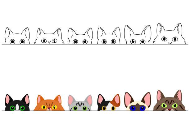 猫のボーダーセットを覗く ベクターアートイラスト