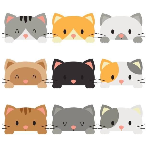白い背景にピークの猫 - 子猫点のイラスト素材/クリップアート素材/マンガ素材/アイコン素材