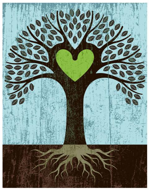 abblätternde farbe grün herz baum - stammbäume stock-grafiken, -clipart, -cartoons und -symbole