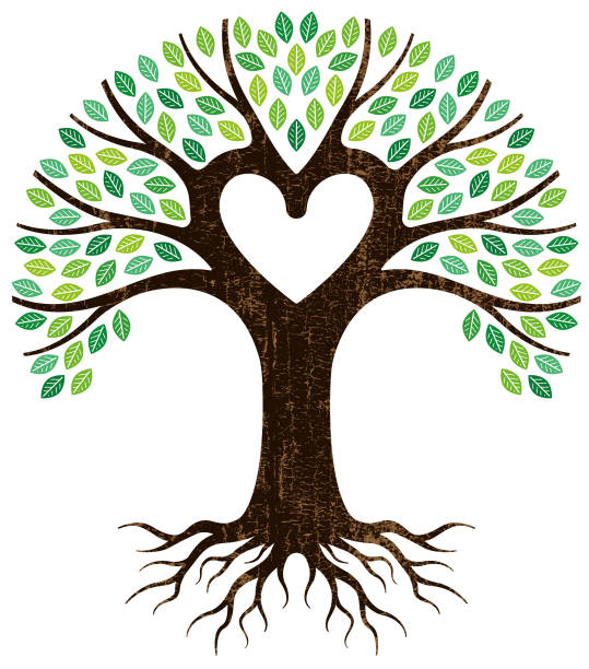 Peeling paint heart tree vector A graphic tree and roots, the central branches forming a heart shape. origins stock illustrations