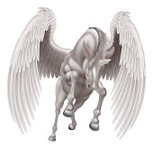 An illustration of a white pegasus unicorn mythological winged horse with horn rearing on its hind legs or running, jumping or flying seen from the front