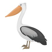 Pelican icon in cartoon style isolated on white background. Bird