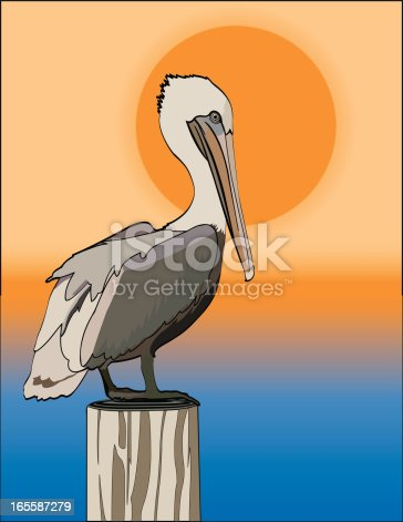 Pelican grouped and easily removed from background.  Gradients used in background but not in bird or post.  EPS and Hi Res JPG included in zip.