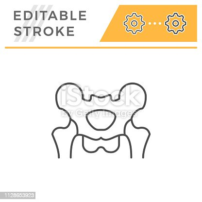 Pelvis line icon isolated on white. Editable stroke. Vector illustration