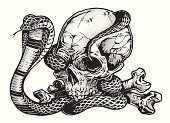 Pen & Ink  Skull with Cobra Snake