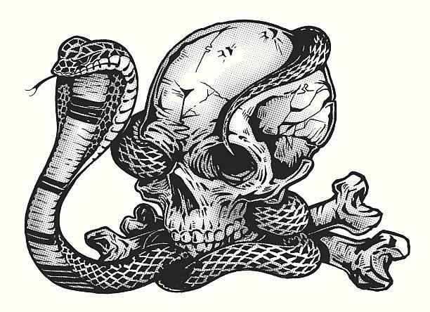 pen &インク頭蓋骨、コブラスネーク - ヘビ点のイラスト素材/クリップアート素材/マンガ素材/アイコン素材
